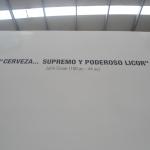 DSC02019